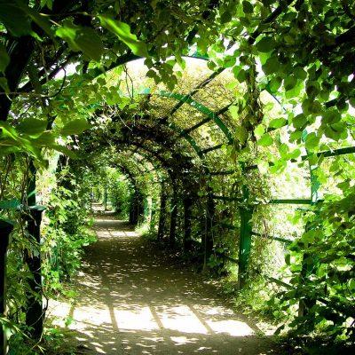 le jardin d'été