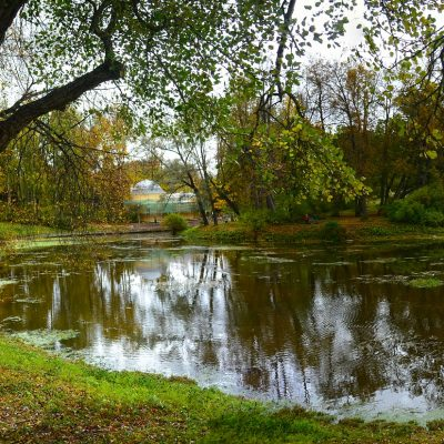 vu sur le palais de Pavlovsk depuis le parc